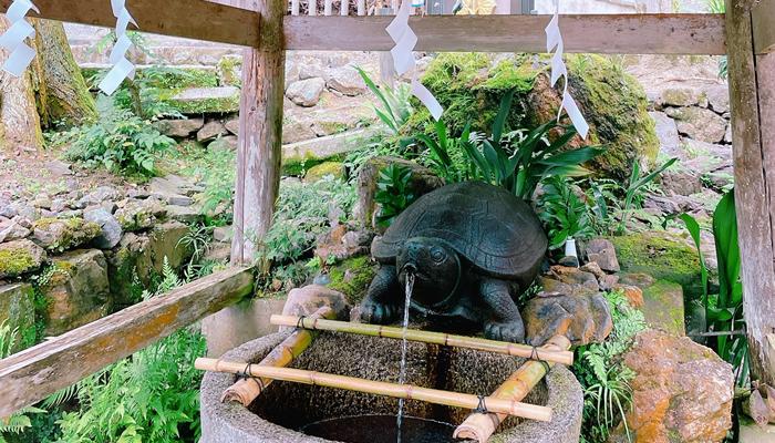 酒造家が持ち帰る!「亀の井」の霊泉